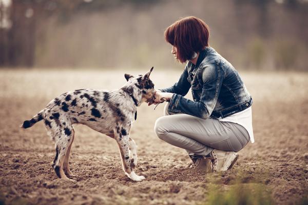 Girl and Dog 1