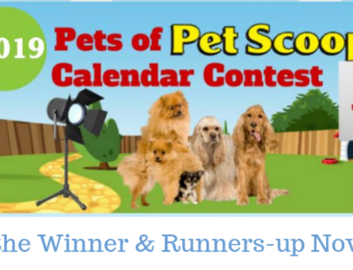 2019 Pets of Pet Scoop